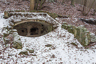 13.02.2016 - Plener - Karkonosze & Puszcza Bukowa