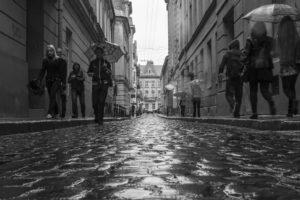 """fot. Bogusz Borkowski – """"Po deszczu..."""" miejsce III"""