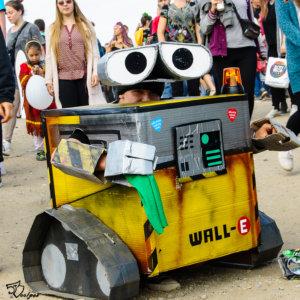 fot. Piotr Lis - WALL-E