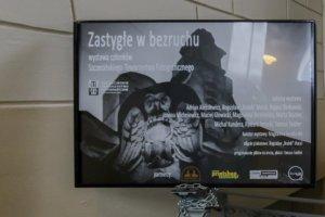"""fot. Adrian Aleksiewicz - wieszanie wystawy """"Zastygłe w bezruchu"""""""